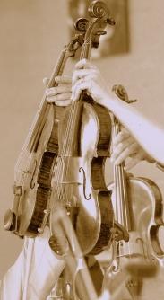 violins and violas.jpg